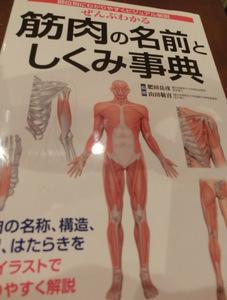筋肉の名前としくみ辞典